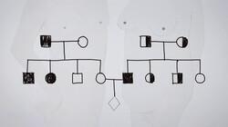 Knippen en plakken in het DNA: Genetisch onderzoek bij ouders