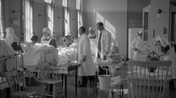 De Spaanse griep in Nederland: De komst van een mysterieus virus