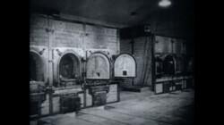De ovens van Buchenwald: De bouw van verbrandingsovens voor vernietigingskampen