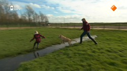 Beestenbrigade: Honden wassen