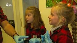 Beestenbrigade: Egels vrijlaten