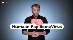 Wat is HPV?: Veroorzaker van baarmoederhalskanker