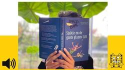 Sjakie en de grote glazen lift: Het lievelingsboek van Mert