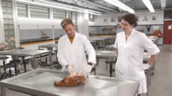 Hoe worden eieren gemaakt?: De snijtafel