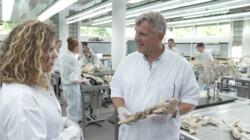 Dode dieren plastineren: Leren van dode dieren