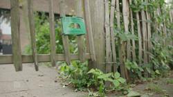 EenVandaag in de klas : Zorgen om egels