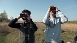 Vroege Vogels in de klas : Zeearend en visarend in Nederland