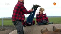 Beestenbrigade: Akkervarkens