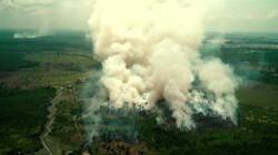 Is nedersoja de oplossing voor ontbossing?: Soja van eigen bodem