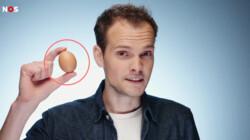 De harde wereld achter jouw ei: Wat gebeurt er met mannelijke kuikens?