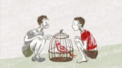 Papegaaien liegen niet: Een boek van Lydia Rood