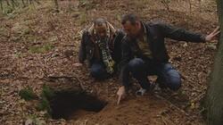 Hoe ziet een dassenburcht eruit?: Een huis onder de grond