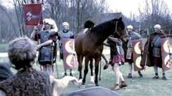 Romeinen in ons land: Bataven en Romeinen
