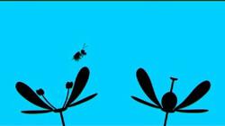 Bestuiving: Bijen verspreiden stuifmeel