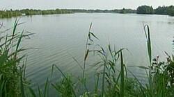 Landschap laagveen: Veeteelt en plassen