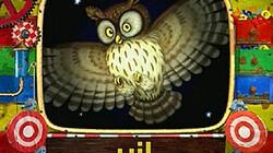 De uil: Kijk en lees