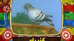 De duif: Kijk en lees