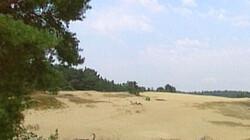 Stuifzand: Duinen in het stuwwallengebied