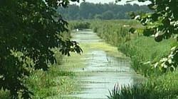 Landschap hoogveen: Slootje graven, bootje varen