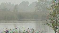 Kenmerken van hoogveen: Een prachtig natuurgebied. Maar wel nat!