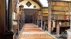 Literatuurgeschiedenis 18e eeuw: Democratiseren (1780-1800)