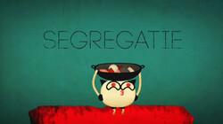 Hoe werkt segregatie?: Wisebit van Tom Schrooten