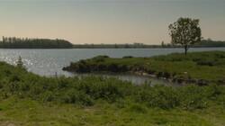Boerenland wordt natuurgebied: Polders weer onder water zetten of niet?