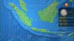 Freeks wilde wereld: Orang-oetan