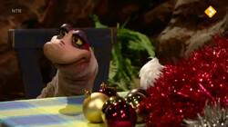 Koekeloere: Kerstbezem-boom
