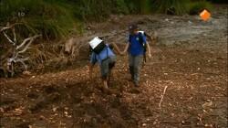 Zapp Your Planet: De orang-oetan wordt bedreigd