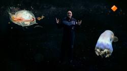 Ontdek de Ruimte - met André Kuipers: Buitenaards leven
