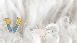 1 Minuutje natuur: Lammetje zoeken