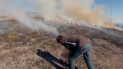 Kantelpunten in het klimaat: Wat doen natuurbranden met het klimaat?