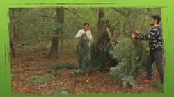 De Buitendienst: Hoe overleef je in het wild?