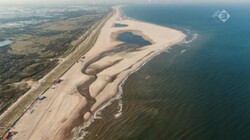 Vroege Vogels in de klas: Het Nederlandse strand