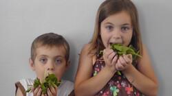 Word je sterk van spinazie?: Clipje uit Studio Snugger