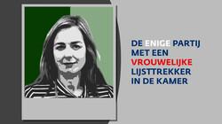 Wat wil de Partij voor de Dieren?: De politieke partij van Marianne Thieme