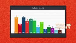 Hoe werken opiniepeilingen?: De mening van een deel van de bevolking