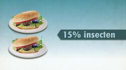 Insecten als alternatief voor vlees: Duurzamer maar ook duurder
