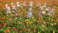 Dansende stoelen in de bloementuin: Stoelen dansen