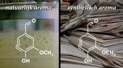 Wat is natuurlijk aroma?: Genetisch gemodificeerd gist