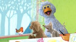 Roodborstje tikt tegen 't raam: Liedje uit Sesamstraat