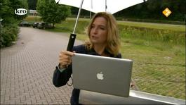 De Wandeling - Hella Van Der Wijst