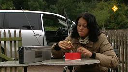 De Buitendienst Van Nieuws Uit De Natuur - Broodje Couscous