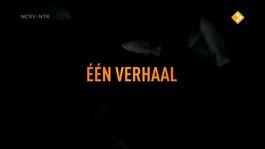 De Geheimen Van Barslet - Bjorn