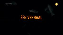 De Geheimen Van Barslet - Nashwa