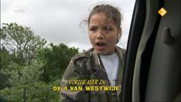 De Vier Van Westwijk - De Verdwijning Van Bo Monti - Concertkaartjes