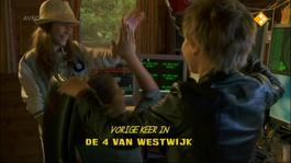 De Vier Van Westwijk - De Verdwijning Van Bo Monti - Het Optreden