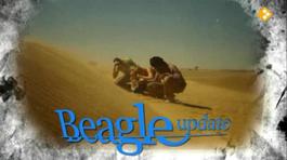 Beagle Updates - Stof