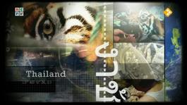 Dossier: Wildlife Crime - De Neushoorn